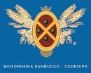 bioforneria sambucco